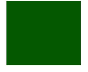 Ma-Kin Vegan Sushi & Izakaya